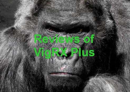 VigRX Plus In Indonesia