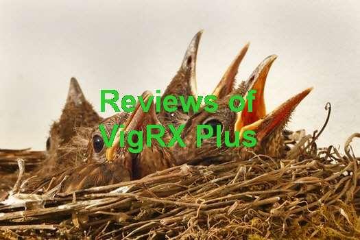 VigRX Plus Camino Real